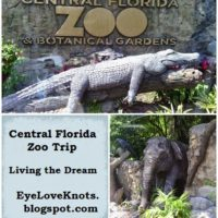 Central Florida Zoo Trip for Birthday – Living the Dream