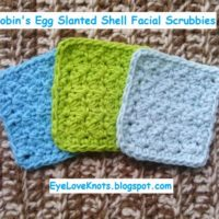 Robin's Egg Slanted Shell Facial Scrubbies – Free Crochet Pattern