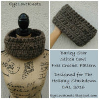 Barley Star Stitch Cowl for The Holiday Stashdown 2016 – Free Crochet Pattern
