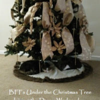 BFFs Under the Christmas Tree – Living the Dream Wednesday