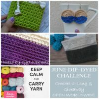 June Dip-Dyed Challenge & Giveaway